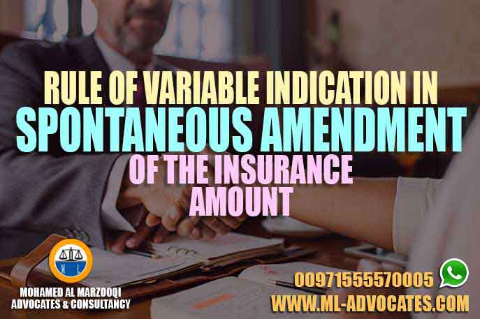 Rule of Variable Indication in Spontaneous Amendment of the Insurance Amount